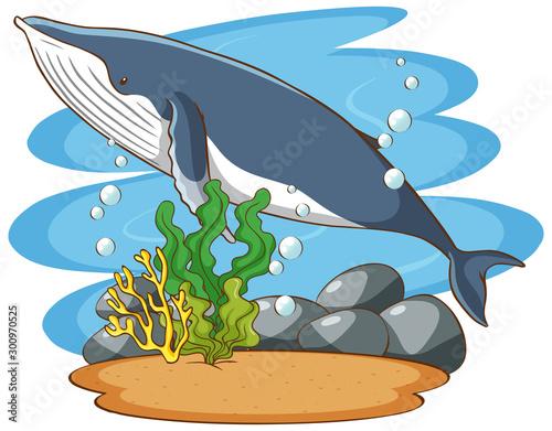 Montage in der Fensternische Kinder Whale swimming in the sea