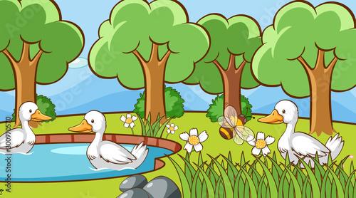 Montage in der Fensternische Kinder Scene with ducks in the park
