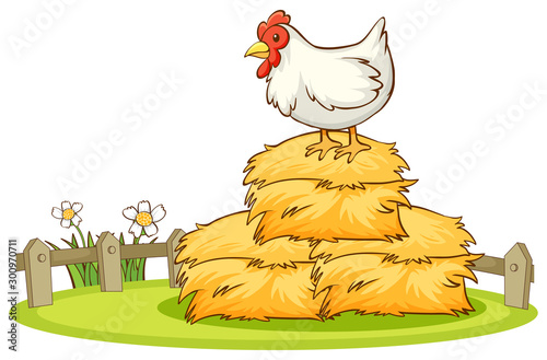 Papiers peints Jeunes enfants Isolated picture of chicken in farm