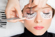canvas print picture - Eyelash extension procedure. Master tweezers fake long lashes beautiful female eyes