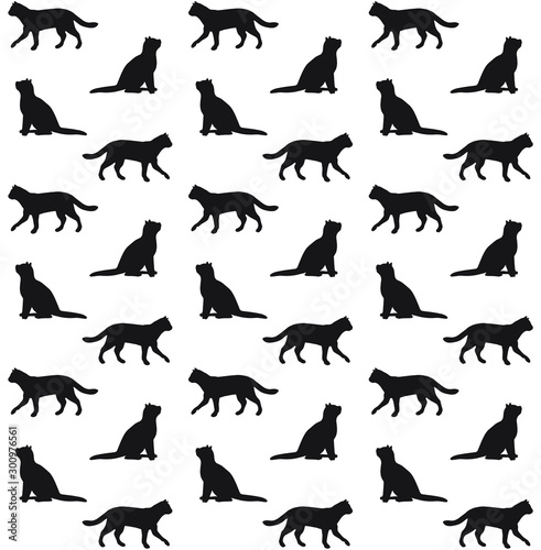 obraz lub plakat Vector seamless pattern of black cats silhouette isolated on white background
