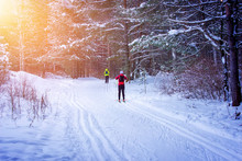 People Cross-country Skiing In...