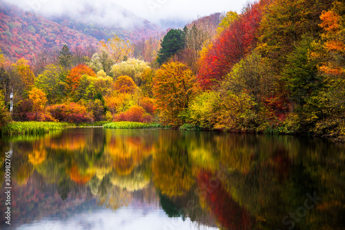 Foto auf Leinwand Wasserfalle Small lake surrounded by forest with colorful plants at autumn cloudy and foggy day. Lake Grza near the Paracin in Serbia.