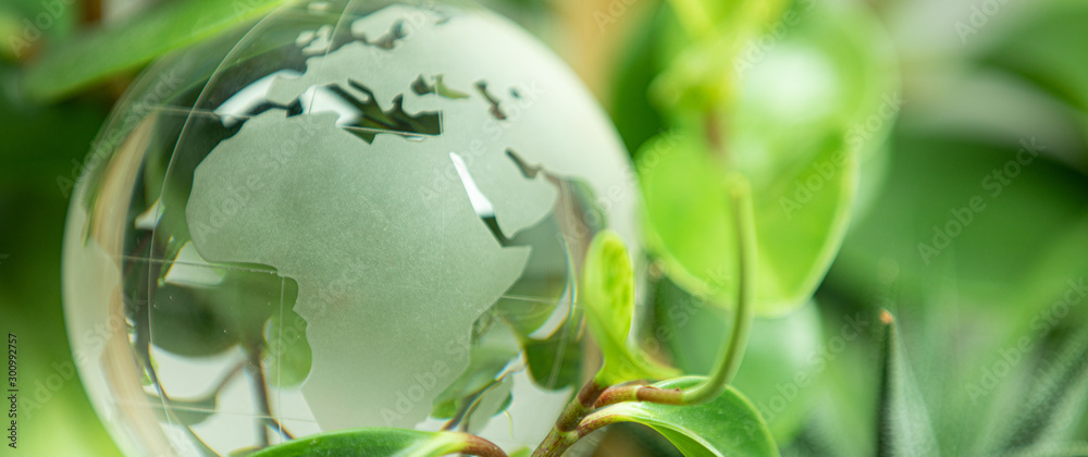 Fototapeta green earth concept glass sphere