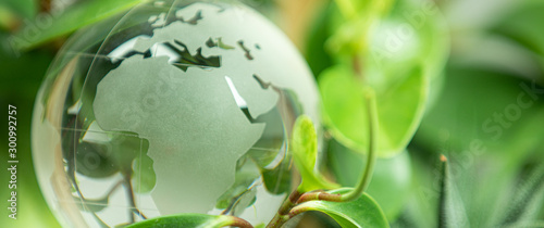 Obraz green earth concept glass sphere - fototapety do salonu