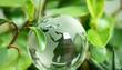 Leinwanddruck Bild - green earth concept glass sphere