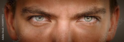 Canvastavla close-up macro shot of human eyes