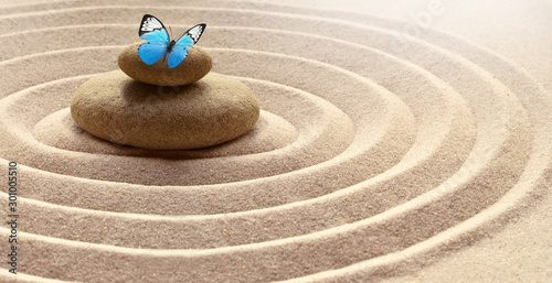 zen garden meditation stone background and butterfly with stones and lines in sa Canvas Print