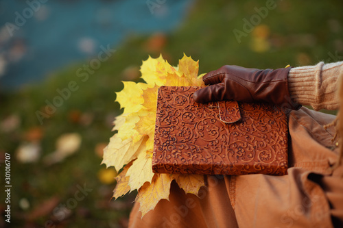 Closeup on elegant woman with notebook and yellow leaves Canvas Print