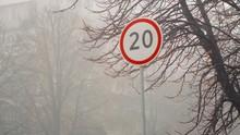 Speed Limit Road Sign Near Tre...