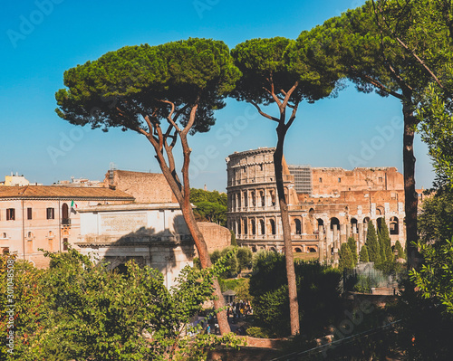 Colosseum from the Roman Forum, Rome, Italy