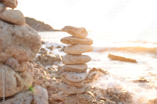Photo sur Toile Zen pierres a sable sunrise by the sea, flora and fauna of ocean life, background water and sunset romantic mood