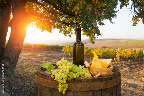 Red wine with barrel on vineyard in green Tuscany, Italy Fototapet