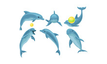 Set Of Blue Dolphins Mading Tr...
