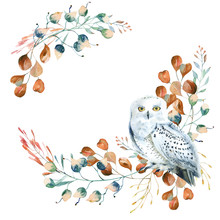 Watercolor Floral Wreath With Polar Owl  And  Leaves. Hand Painted Christmas Frame With Bird And Leaves Of Silver Dollar Eucalyptus Isolated On White Background.