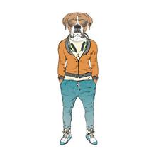 Humanized Boxer Breed Dog Dres...