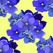canvas print picture - seamless pattern Violet flower of pansies. illustration