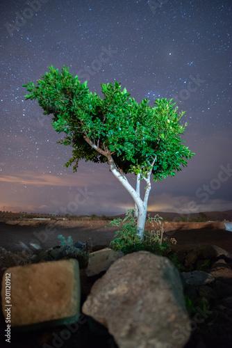 Fototapety, obrazy: Bonito paisaje nocturno con buenos colores