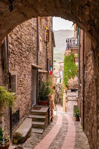 Fotografie, Obraz  Vista del Borgo medievale Dolceacqua, Liguria, Italia