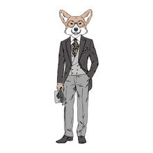 Humanized Welsh Corgi Breed Dog Dressed Up In Vintage Outfits. Design For Dogs Lovers. Fashion Anthropomorphic Doggy Illustration. Animal Wear Suit, Tie, Glasses, Bowler Hat. Hand Drawn Vector.