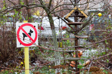 Prohibition Sign No Dogs In The Park. Playground Area Security