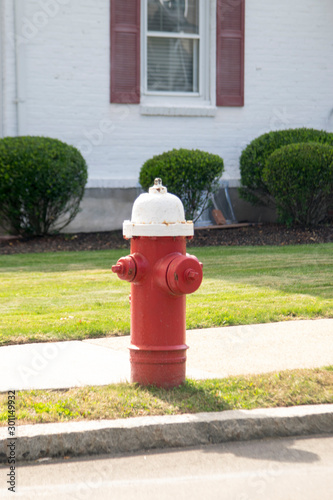 FIRE HYDRANT  in a residential area painted in red and white colors
