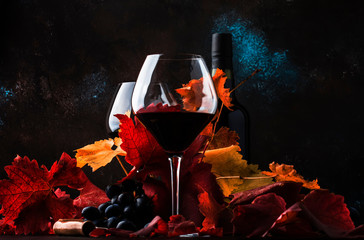 Dry Red Wine in big wine glass, autumn still life with leaves, wine tasting concept, rustic style, selective focus