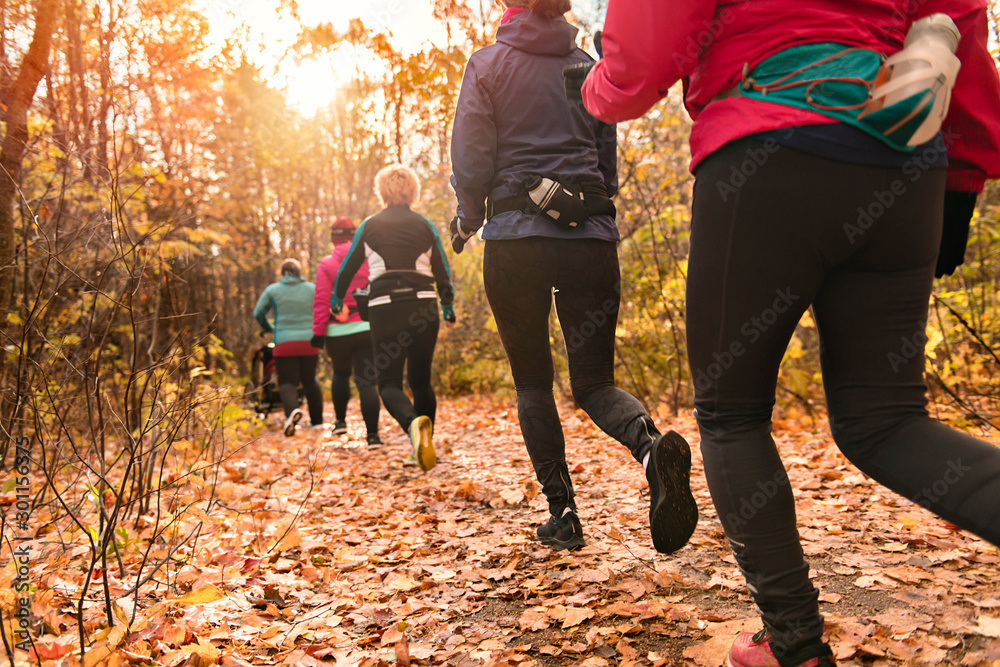 Fototapety, obrazy: woman group out running together in an autumn park they run a race or train in a healthy outdoors lifestyle concept