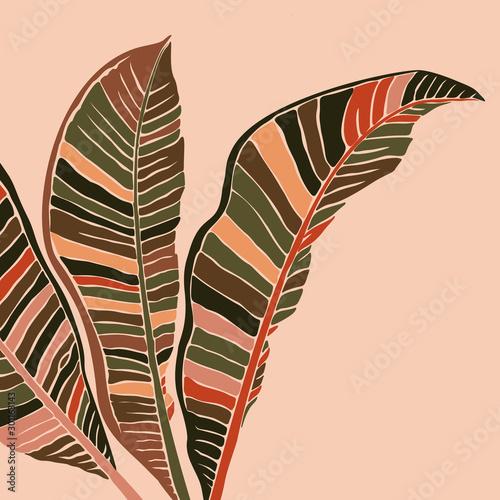 liscie-bananowca-w-minimalistycznym-stylu