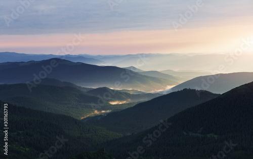 Obraz Big forest. Majestic Carpathian mountains. Beautiful landscape. Breathtaking view - fototapety do salonu
