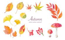 秋の自然素材水彩イラ...