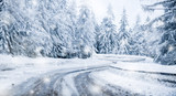 Fototapeta Fototapety na ścianę - Winter beautiful snowy road snow or landscape forest and trees covered with snow in background.