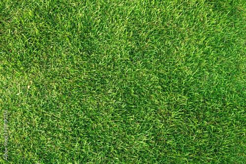 Fotografía  Artificial green grass background