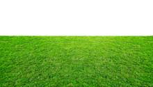 Green Grass Meadow Field From ...