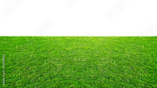 Leinwand Poster Green grass meadow field from outdoor park isolated in white background with clipping path