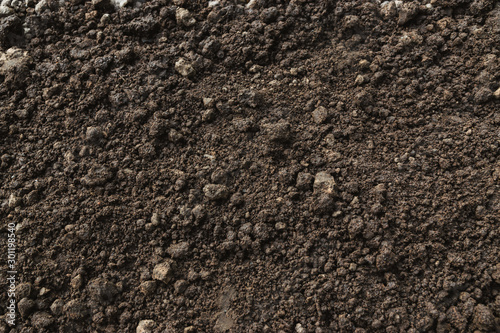 Obraz Closeup abundance soil for agriculture or planting peach. - fototapety do salonu