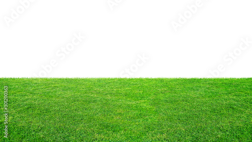 Fotografie, Tablou  Green grass meadow field from outdoor park isolated in white background with clipping path