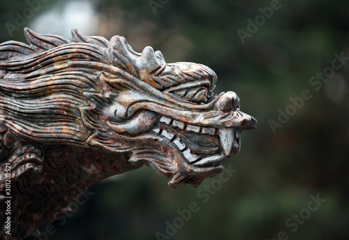 Fotomural  stone dragon statue tree background