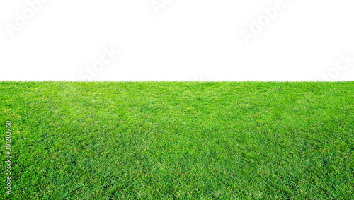 Green grass meadow field from outdoor park isolated in white background with clipping path Tablou Canvas
