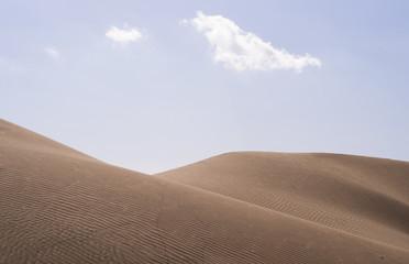 Beautiful desert landscape. Sand dunes in Maspalomas desert
