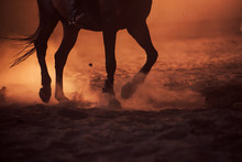 Majestic Image Of Horse Silhouette With Rider On Sunset Background