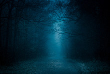 Blue Toned Mysterious Road Thr...