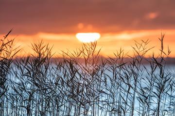 Fototapeta Wschód / zachód słońca sonnenaufgang am meer