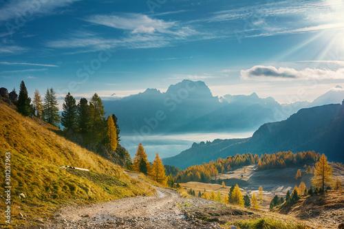Landscape of beautiful autumn picturesque mountains - 301237963