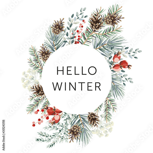 Christmas nature design circle frame, text Hello Winter, white background. Green pine, fir twigs, cones, red berries. Vector illustration. Greeting card, poster template. Xmas holidays