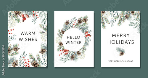 Christmas nature design greeting cards template, circle frame, text Hello Winter, Warm Wishes, Merry Holidays, white background. Green pine, fir twigs, cones, red berries. Vector xmas illustration - 301243146