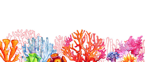 Colorful corals in a row. Hand drawn watercolor and outline illustration