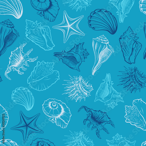 Seashells Scallops Vector Seamless Pattern Marine Life Animals Colorful Drawings On Blue Background Sea Urchin Freehand Engraving Underwater Creatures Outline Wallpaper Textile Design Buy This Stock Vector And Explore Similar Vectors