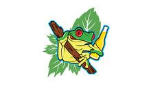 Drunken Frog With A Beer In Co...