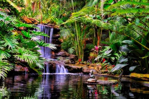 Tropical Waterfall Wallpaper Mural